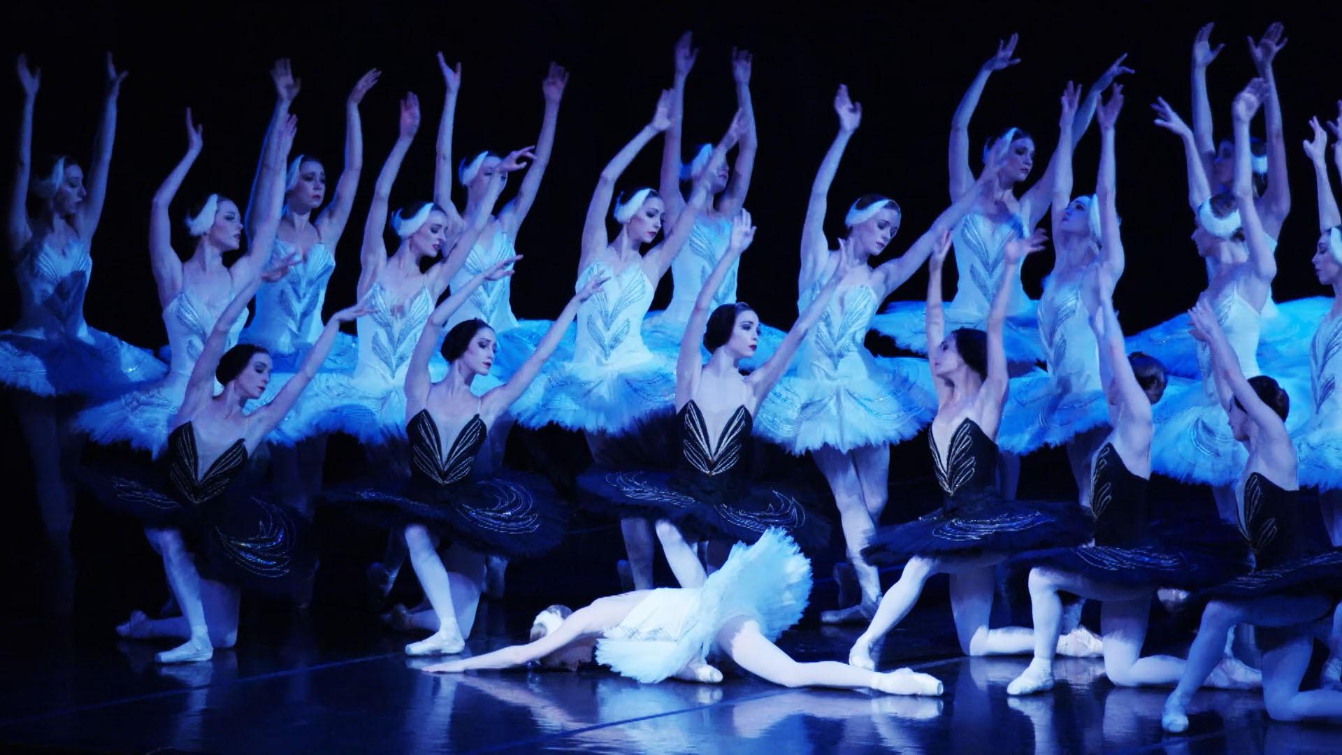 SwanLake_Ballerinas_CC